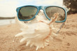 sunglasses on a sandy beach concept Summer