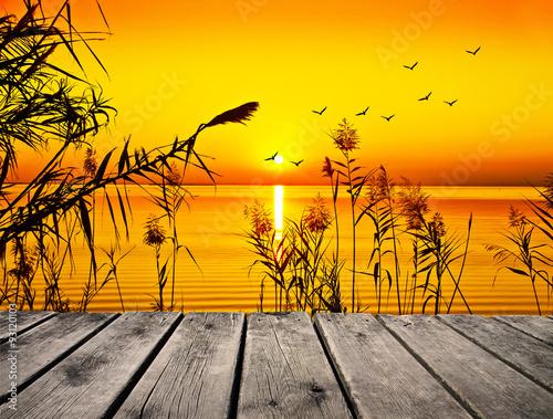 Photo Stands Melon tiempo libre en la naturaleza