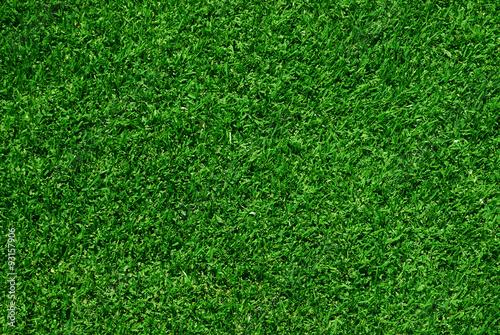 Zdjęcie XXL zielona trawa tło