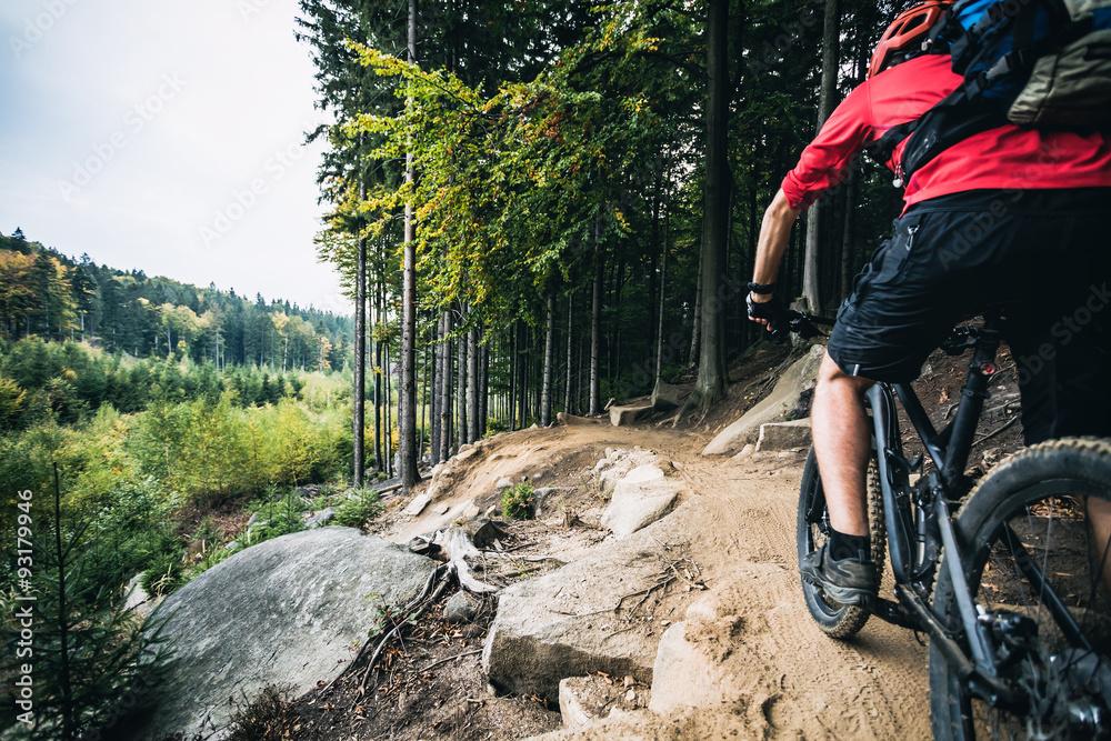 Fototapeta Mountain biker riding cycling in autumn forest