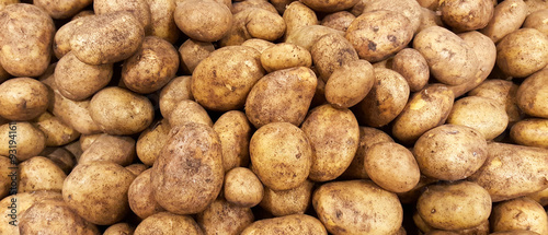 Foto Kartoffel