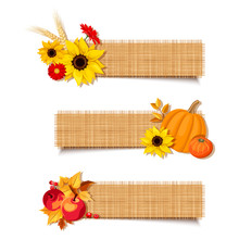 Set Of Three Vector Autumn Banners With Pumpkins, Sunflowers, Gerbera Flowers, Apples And Leaves.