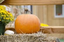 Pumpkin Display With Seasonal Display On Bales Of Hay And Flowers