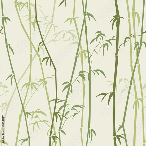 drzewka-bambusowe