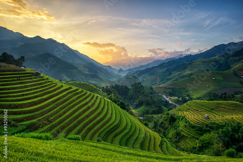 Acrylic Prints Rice fields Terrace rice field - Mù Căng Chải District, Yen Bai Province, Vietnam