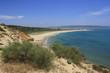 Trafalgar, Barabate, Caños de Meca. Rocas en el mar, Cádiz, Vista de playa con mar azul intenso, arena clara, hierba, arbustos y campo, cielo azul y despejado , Cádiz, flores en Primavera