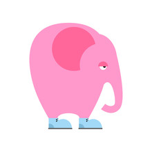 Big Pink Elephant In  Shoes. Sad Animal With Trunk And Big Ears.