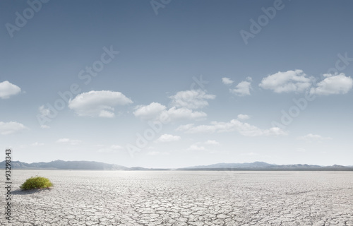 Fototapeten Durre desert