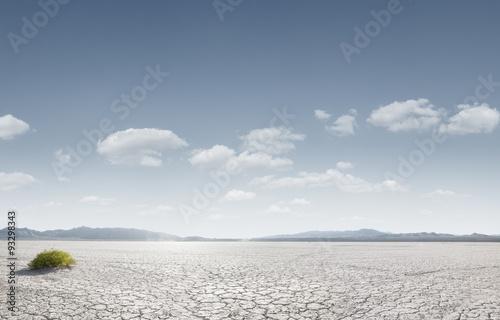 Foto op Aluminium Droogte desert