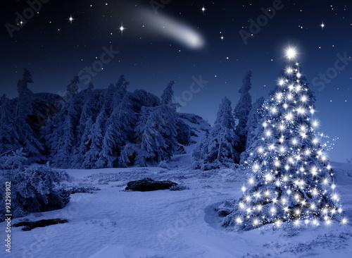 Hell Erleuchteter Christbaum im Wald Canvas-taulu