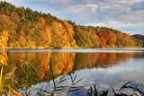 Złota polska jesień, lesisty brzeg jeziora Dębno