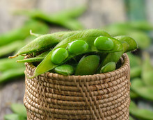 Green Soy Beans In The Basket