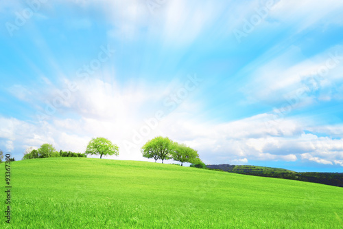 Papiers peints Piscine Collina verde con tre alberi e nuvole nel cielo azzurro