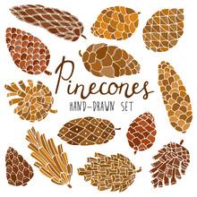 Pine Cones Set