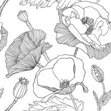 Linear Seamless Pattern - Poppy Flower.