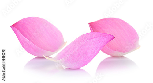 Fotobehang Lotusbloem Closeup on lotus petal on white background