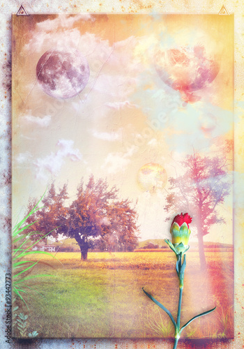 Door stickers Imagination Countryside with trees,red carnation and moon
