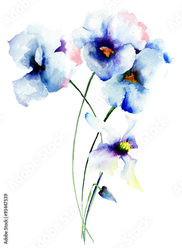 Papiers peints Pansies Blue pansy flowers