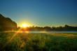 Streuendes Sonnenlicht im Frühnebel