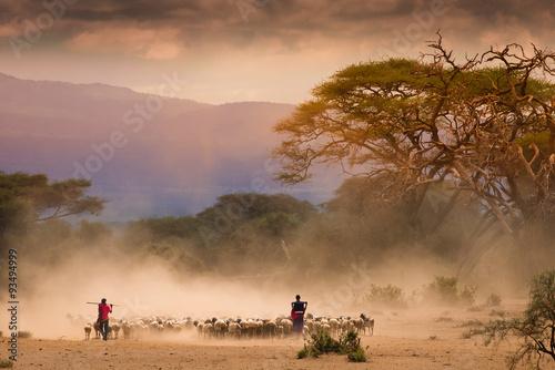 Fotografie, Obraz  Masai shepherds with herd og goats