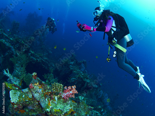 Scuba diver with coral Wallpaper Mural