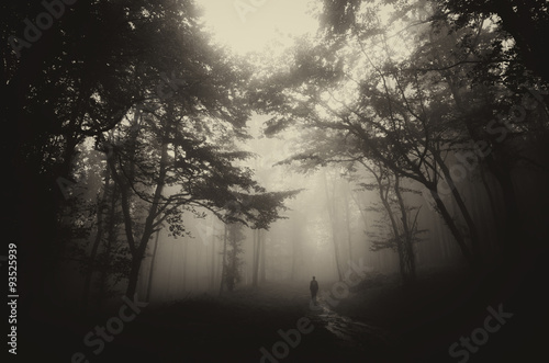dark misty forest with man on path vintage sepia Poster