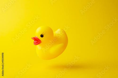 Fotografia Yellow rubber duck