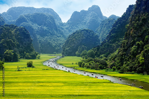 Fotografie, Obraz  Rice field and river, NinhBinh, vietnam landscapes