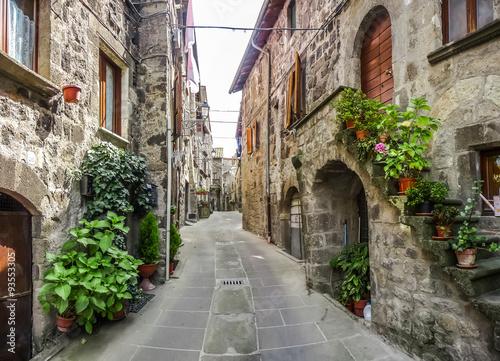 Fototapeta Piękny widok na stare tradycyjne domy i idylliczną uliczkę w historycznym mieście Vitorchiano, Viterbo, Lacjum, Włochy do salonu