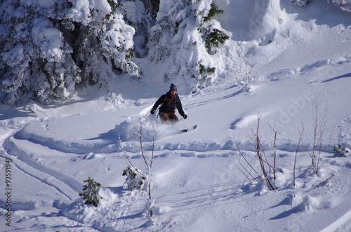 Poster Glisse hiver ski hors pistes - freeride