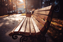 Bench In The Autumn Park, Recreation