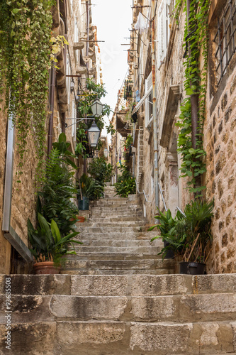 Deurstickers Smal steegje Narrow and empty alley, steps, potted plants and vines at the Old Town in Dubrovnik, Croatia, viewed from below.