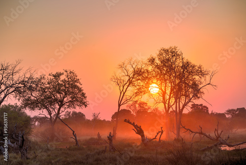 Foto op Canvas Koraal Africa Sunset