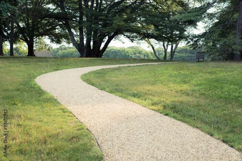 Fotografía  Path through treelined park with grass