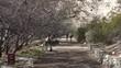 Sedona Arizona Montezuma Castle ruins hiking trail 4K 014