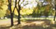 Leinwandbild Motiv blurred background of autumn park