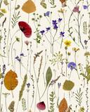 flowers - 93700302