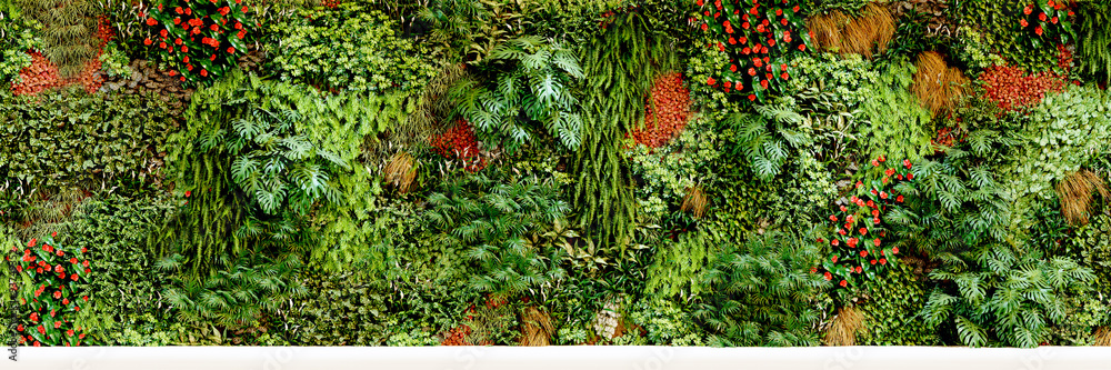 Fototapety, obrazy: big vertical garden - großer vertikaler garten - Pflanzwand