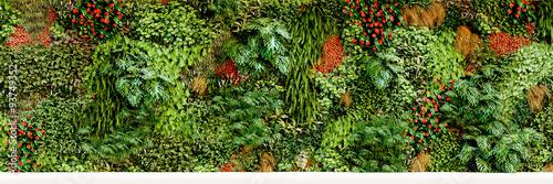 Fotografie, Obraz  big vertical garden - großer vertikaler garten - Pflanzwand