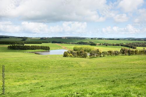 Fotografie, Obraz  Lush Farmland, Southern Victoria, Australia