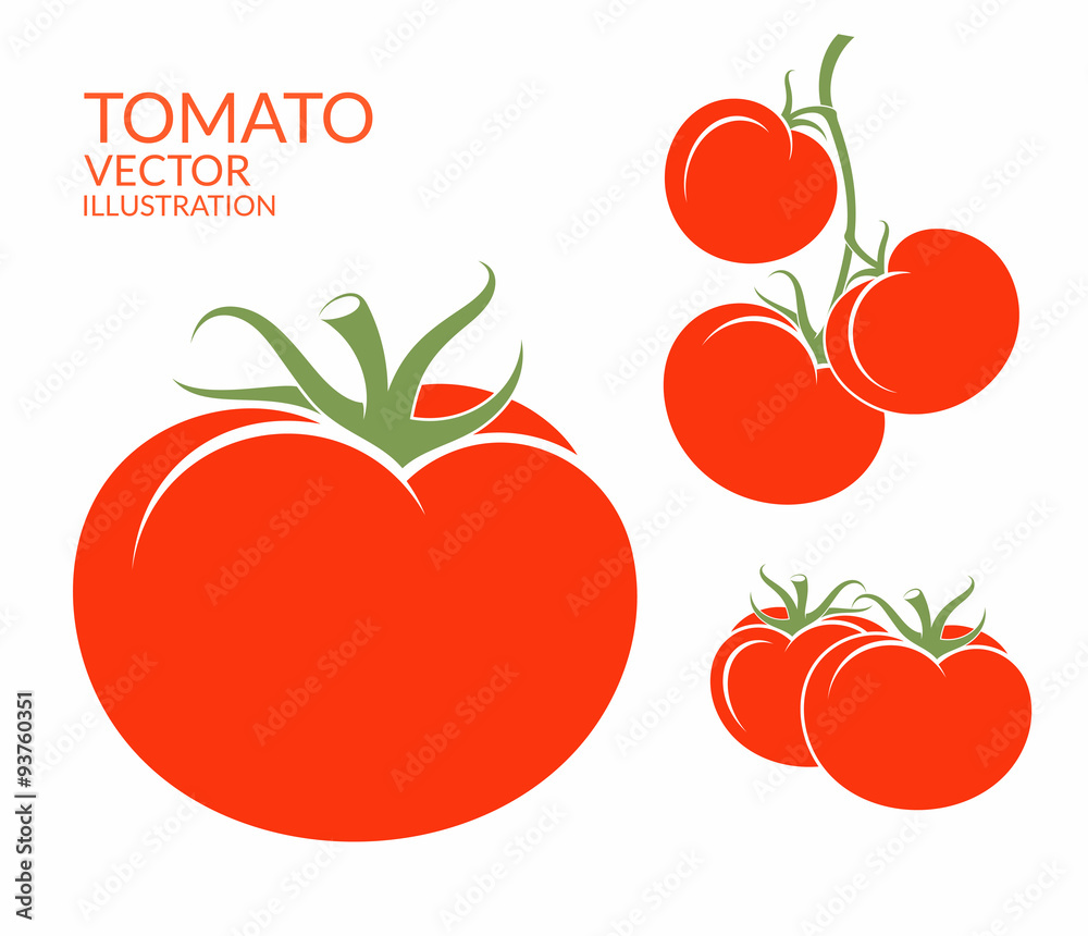 Tomato. Isolated vegetables on white background