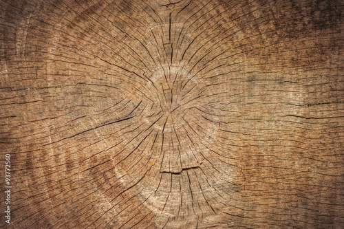 Foto op Canvas Brandhout textuur Old Wood Texture
