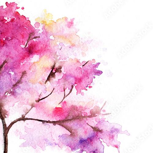 pojedynczy-czeresniowy-sakura-menchii-drzewo-odizolowywajacy