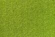 Artificial grass field textur