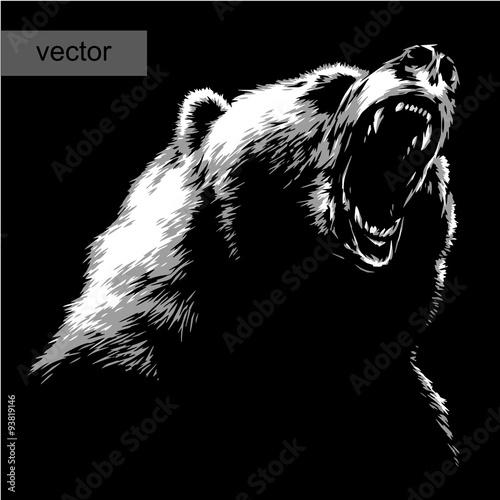 Fotografie, Tablou  engrave bear illustration