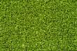 Grüner Kunstrasen Gras Feld Textur