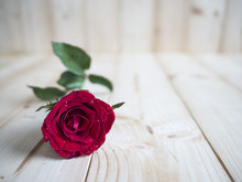 Red Rose 2 - One Red Rose On Wood Background For Love Concept, Valentines Day