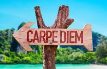Carpe Diem Arrow With Beach Ba...