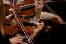 The Hands Of Violinists In A S...