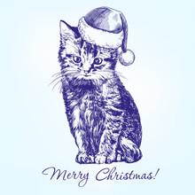 Christmas Kitten In Santa Stocking Hat Hand Drawn Vector Llustration Realistic Sketch